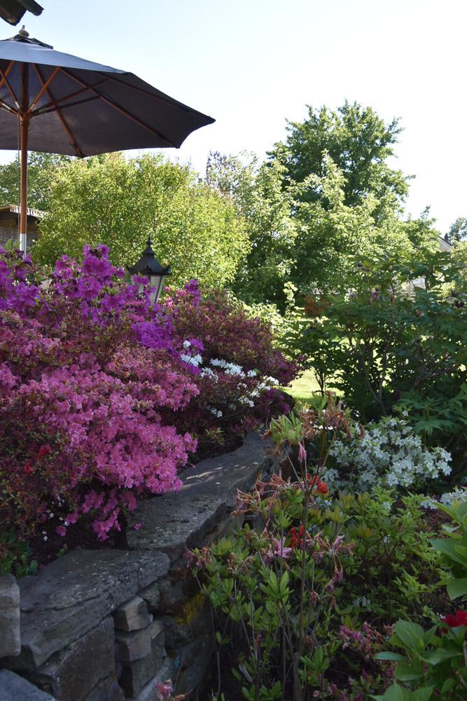 Gartentraum im Siebengebirge