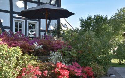 Gartentraum im Siebengebirge – mit Cottage-Charme