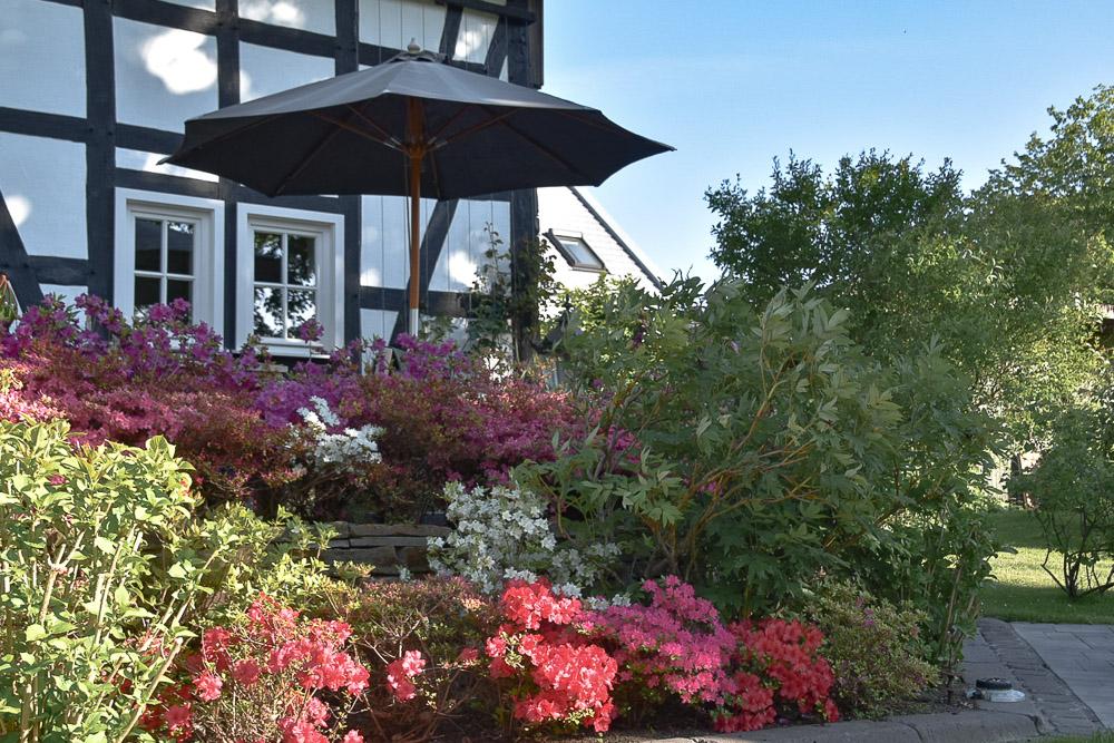 bunter Garten vor Fachwerkhaus